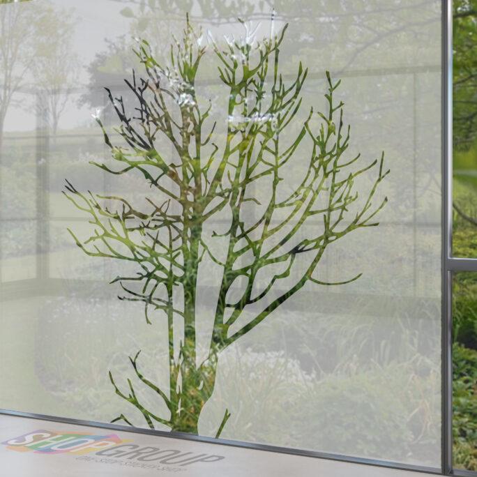 Zelfklevende raamfolie boom
