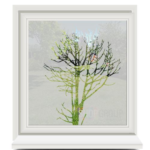 Zelfklevende raamfolie met boom