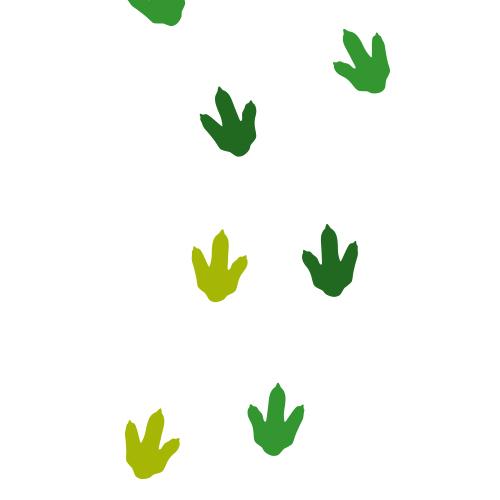 Dino voetafdruk stickers