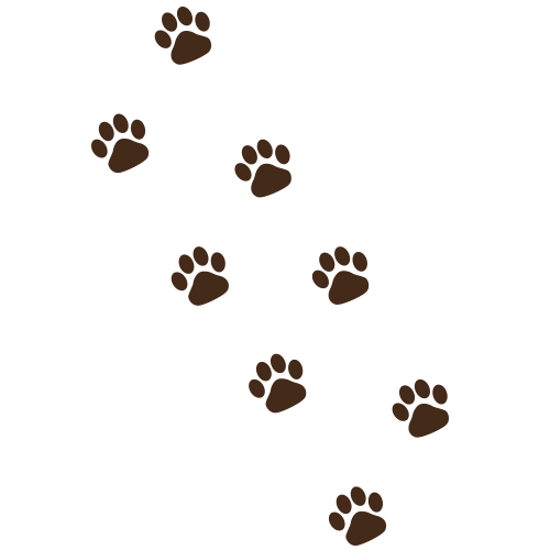 Hondenpoot stickers