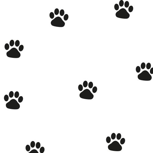 Hondenpootjes Stickers