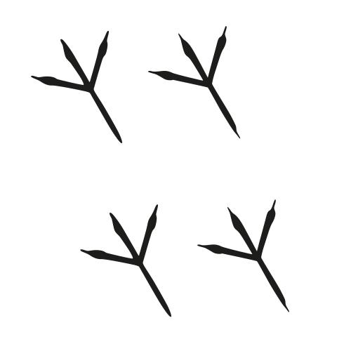 Vogel pootjes stickers – Pootafdruk stickervellen