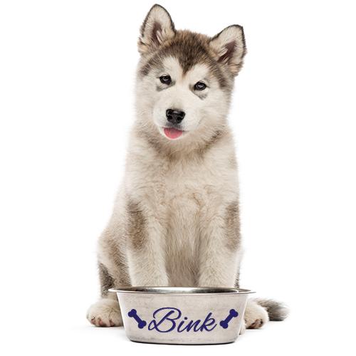 Hondensticker met naam