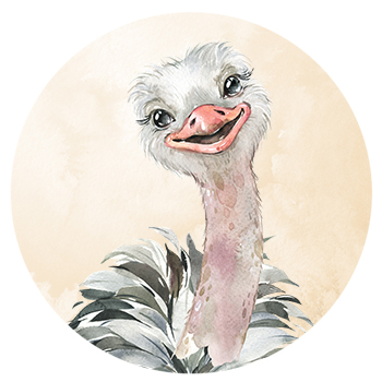 Muursticker Struisvogel wandcirkel waterverf