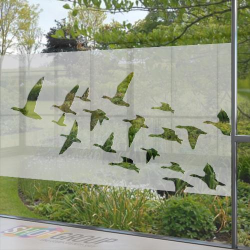 Glasfolie met vogels