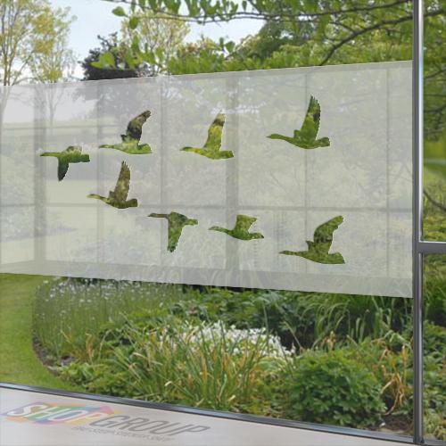 Glasfolie vliegende vogels