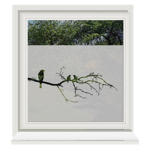 Raamfolie zelfklevend vogels op een tak